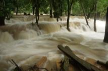 Tad Sae falls