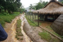 Traditional houses, and mud