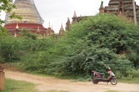 E-bike outside Dhamma Yazika
