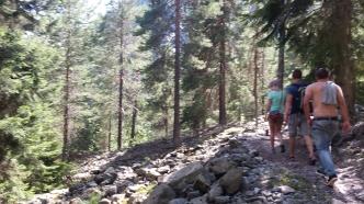 Trail towards the glacier